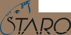 STARO Logo